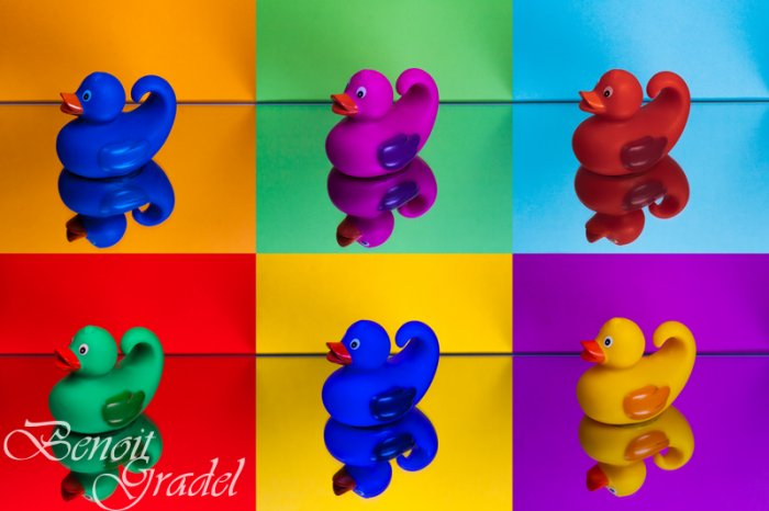 Pop-art Canards
